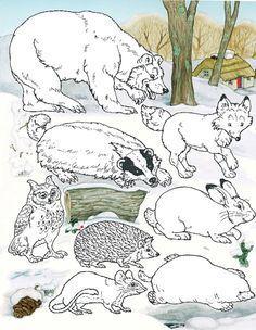 La moufle, les animaux Animals from The Mitten by Jan Brett Winter Activities, Preschool Activities, Activities For Kids, Jan Brett, Winter Art, Winter Theme, Arctic Animals, Majestic Animals, Winter Crafts For Kids