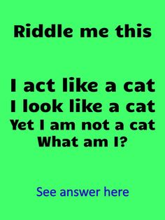 Best Riddles For Kids, What Am I Riddles, Tricky Riddles, Jokes For Kids, Funny Jokes And Riddles, Funny Cartoon Memes, Funny Puns, Funny Brain Teasers, Brain Teasers For Adults