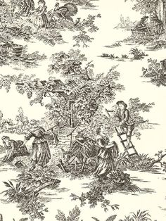 Wallpaper Classic French Country Life Toile Black on Off White Background