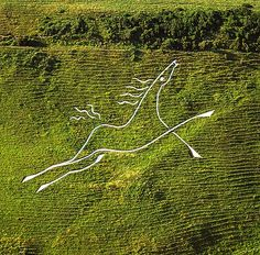 Chalk Horses In (and Around!) Wiltshire Part 2 | The Flying Shetlands