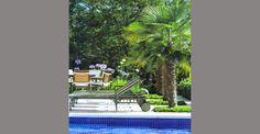 Condomínio Jardim das Palmeiras – Bragança Paulista, SP – Arquitetura A1 Arquitetura | Marcelo Bellotto