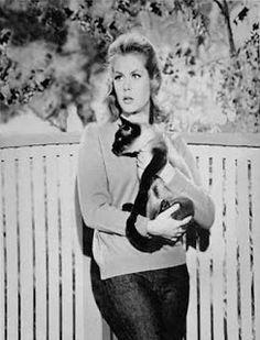Siamese Cat and Elizabeth Montgomery