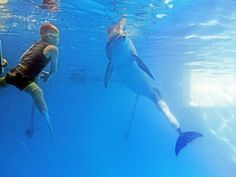 Both wearing prosthetic flippers, boy and dolphin swim and bond. Cieran Kelso swims with Winter the dolphin in the dolphin's tank at the Clearwater Marine Aquarium.