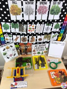 How to set up the Science Center in your Early Childhood Classroom - Pocket of Preschool Fall leaves, trees, and seasons science table for preschool, pre-k, and kindergarten! Perfect for a tree study or a leaves study. Science Center Preschool, Preschool Classroom Setup, Creative Curriculum Preschool, Preschool Activities, Preschool Seasons, Classroom Tree, Elementary Science, Seeds Preschool, Kid Science