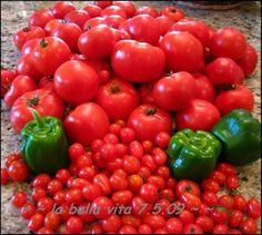 Best tomato gardening tips!