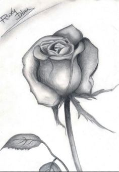 Sea Drawing, Shading Drawing, Painting & Drawing, Pencil Art, Pencil Drawings, Art Drawings, Cancer Sign Tattoos, Digital Art Beginner, The Art Sherpa