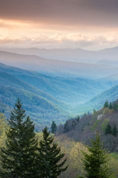 The Great Smoky Mountains - The Great Smoky Mountains National Park is a 800-square-mile mountain wilderness that is federally owned and managed by the National Park Service. It protects the largest swatch of upland forest east of the Mississippi.  http://www.visitmysmokies.com/area-information/smoky-mountains/