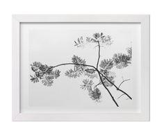 Black and White Botanical Print Minimalist by MerakiBrooklyn