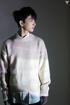 홍지수 / Seventeen Joshua