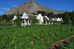 Houses For Sale in Franschhoek. View our selection of apartments, flats, farms, luxury properties and houses for sale in Franschhoek by our knowledgeable Estate Agents. Cape Colony, Cape Dutch, Dutch House, Property Real Estate, Cottage Homes, Building A House, Farmhouse, Exterior, Outdoor Structures