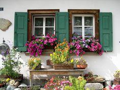 All sizes   Flowery windows. Blumen Fenstern. (Sils)   Flickr - Photo Sharing!