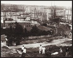 Baltimore Inner Harbor from Federal Hill area c1870