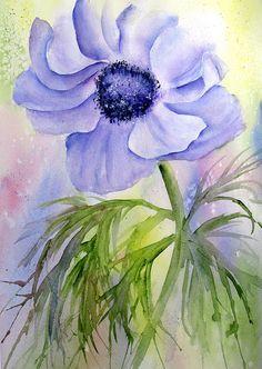 blue poppy - lin frye