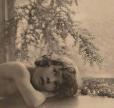 An image of Blossom by Harold Cazneaux