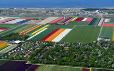 #WindMill, Netherlands | #WindTurbine http://bbs.voc.com.cn/topic-5088054-1-1.html