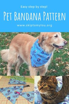 Have you ever wondered how to make dog bandanas? If you are a pet lover you can make this Furry Fan Pet Bandana for your dog or cat. It makes the perfect gift for an animal lover. It is so clever how these dog bananas slip over the pet collar making it Dog Collar Bandana, Cat Bandana, Dog Clothes Patterns, Dog Crafts, Dog Items, Pet Collars, Dog Bowtie, Dog Training, Training Schedule