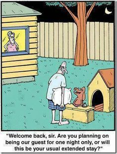 husband, doghouse, sleep, wife, argue
