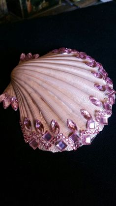 Shell 🐚 - Shell 🐚 The Effective Pictures We Offer You About crafts A quality picture can tell you many th - Sea Crafts, Rock Crafts, Diy And Crafts, Arts And Crafts, Baby Crafts, Seashell Painting, Seashell Art, Seashell Crafts, Seashell Projects