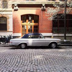 Mercedes / photo by Jacob Santiago