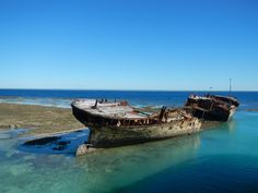 The Protector on Heron Island, The Great Barrier Reef #HeronIsland. For more information on Heron Island go to: http://j.mp/NgPqey