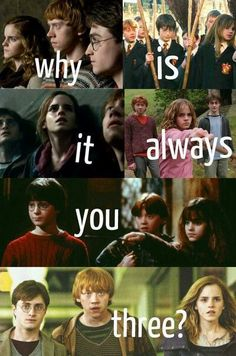Why is it always you three? Harry ron and Hermione golden trio Images Harry Potter, Harry Potter Puns, Harry Potter Characters, Harry Potter Universal, Harry Potter World, Harry Potter Ron And Hermione, Fans D'harry Potter, Potter Facts, Anecdotes Sur Harry Potter