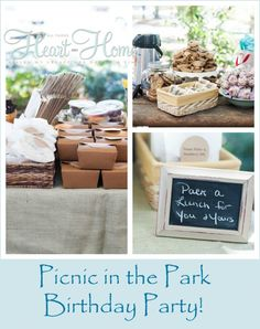 picnic in the park party - GREAT simple ideas