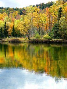 Autumn in  Vermount