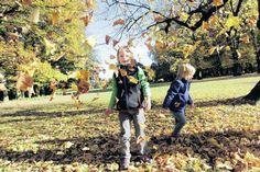 Herbst in Hamburg: Farbenrausch an Straßenrändern: Guck mal, was da rieselt!