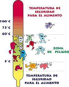 Mantener los alimentos a temperaturas seguras. - Marina Muñoz Cervera - Conservar y preparar nuestros alimentos a las temperaturas adecuadas nos asegura su inocuidad. Esta es la cuarta llave de inocuidad de los alimentos de la OMS. La temperatu...