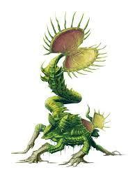Giant Venus Flytrap for Paizo Pathfinder Bestiary. Giant Flytrap for Paizo Alien Concept Art, Creature Concept Art, Creature Design, Alien Creatures, Fantasy Creatures, Mythical Creatures, Fantasy Monster, Monster Art, Plant Monster