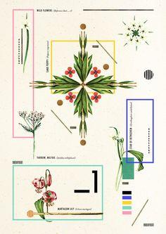 Wild Flowers_1 Art Print by Dawn Gardner | Society6