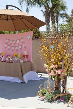 pink backdrop and burlap tablecover!  LOVE IT!!