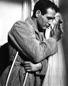 Paul Newman cat on a hot tin roof | Tumblr