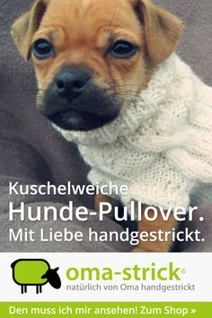 oma-strick-Hunde-Pullover-Tylor