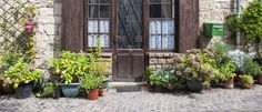 4 Pretty Front Door Plants You Can't Kill If You Tried  - Redbook.com