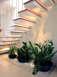 http://www.architectureadmirers.com/wp-content/uploads/2016/09/small-indoor-gardens-under-the-stairs-4.jpg