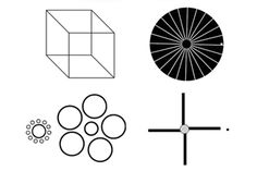 Visual Mind Games Challenge your brain with the well-known Necker cube and other optical brainteasers. Brain Training Games, Brain Games, Necker Cube, Illusion Pictures, Josef Albers, Mind Games, Brain Teasers, Neuroscience, Optical Illusions