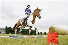 Which jumps do what? | Your Horse | Videos & Advice | Riding Advice | Show Jumping