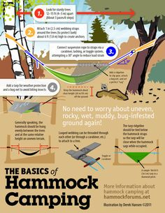 The Basics of Hammock Camping | Camping hacks: survival life hacks at survivallife.com #camping #outdoorsurvivalskills