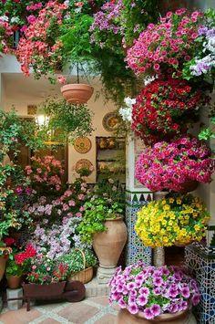 Colorful Patio.