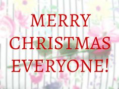 Merry Christmas Everyone - Megan Time Blog