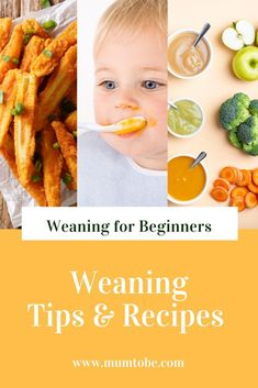 Are you looking to start weaning? We have the basics covered plus weaning recipe… Are you looking to start weaning? We have the basics covered plus weaning recipes baby led weaning food ideas and tips to make mums life easier Feeding Baby Solids, Solids For Baby, Weaning Foods, Baby Led Weaning, Pureed Food Recipes, Baby Food Recipes, Freezing Baby Food, Pregnancy Advice, Eat The Rainbow