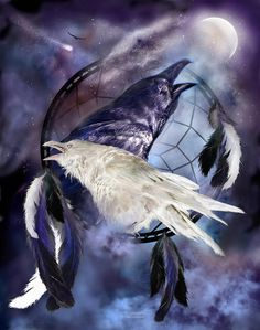 The White Raven Mixed Media  - The White Raven Fine Art Print