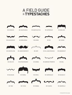 """A Field Guide to Typestaches"". Hilarious :)"