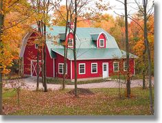 Although my hubby suggested a barn house - he doesn't want a red one ;-)    Maybe green?