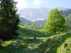 lets's go for a hike in the Bavarian Alps, Germany (by dorena-wm)