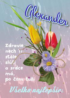 Alexander Zdravie nech  Ti stále slúži a srdce má, po čom túži Všetko najlepšie Plants, Plant, Planets