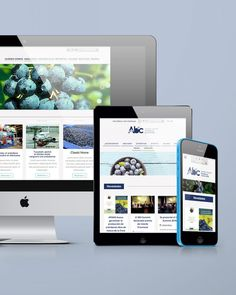 Sitio web institucional Argentinean Blueberry Committee