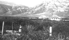 Mosselrivier: the farm on which Hermanus was born - The Village News Marrying Young, East India Company, British Government, British Soldier, Seaside, Building A House, Lifestyle, News, Beach
