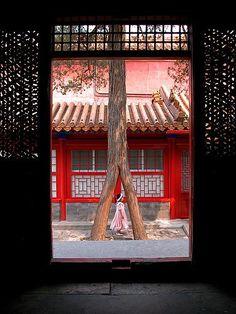 Door China | Doors Set Beijing China Expo Neuilly Fev 2005 -… | Flickr